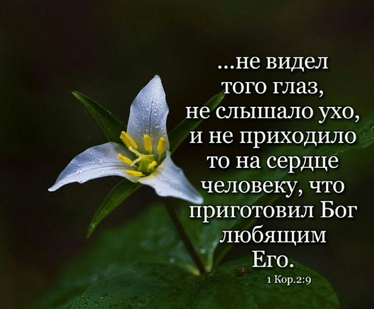 Любишь ли ты Господа?