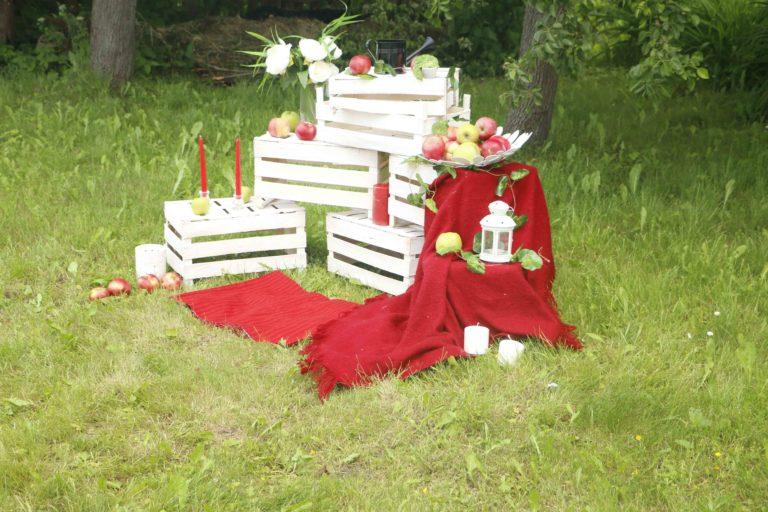 Церковный пикник