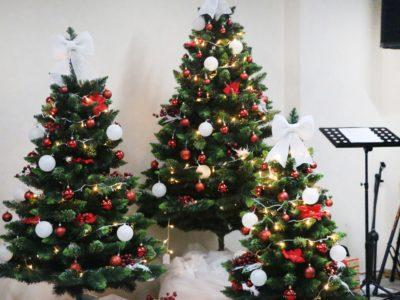 Светлый день Христова Рождества